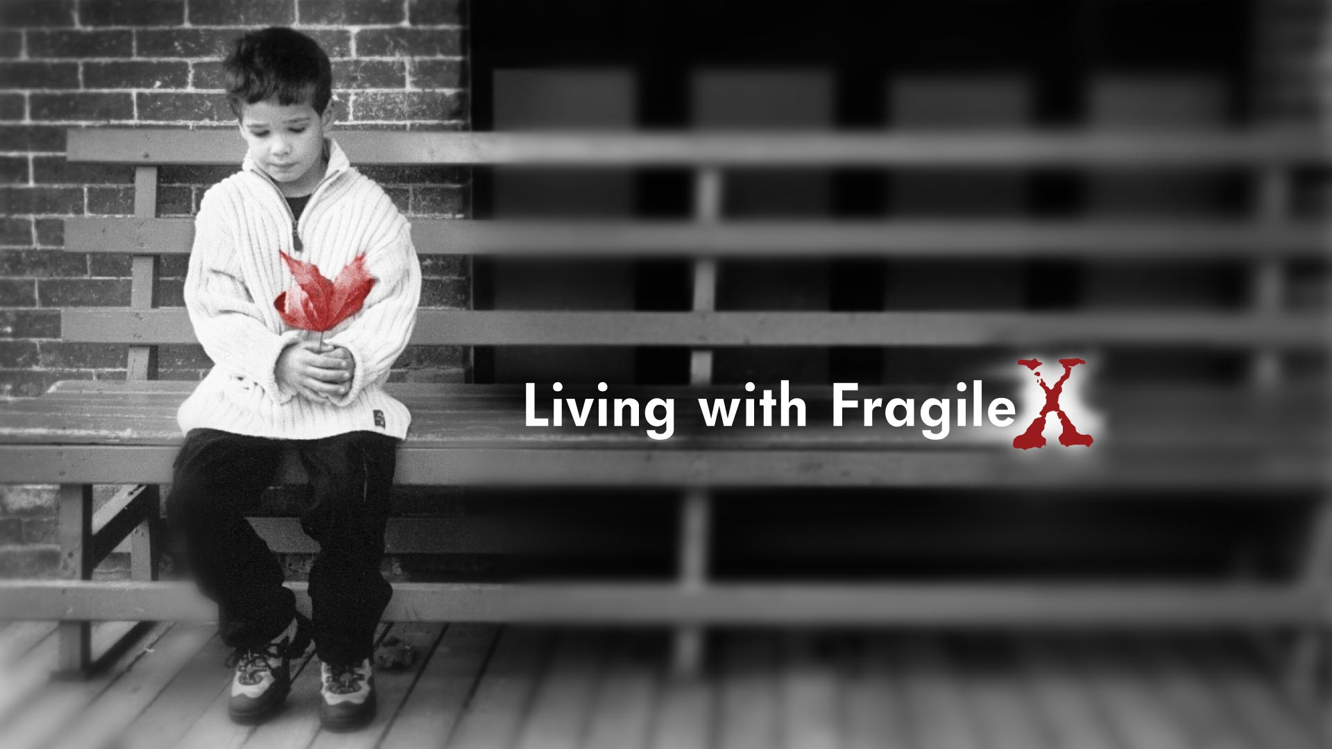 Living with Fragile X